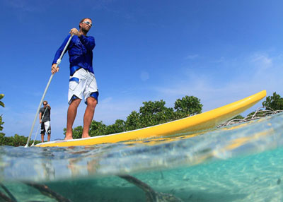 Stand Up Paddle Board Lessons - JC Surf Camp